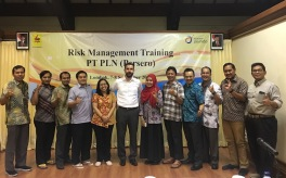 PT PLN_Corporate Training_2017_Marc Ronez